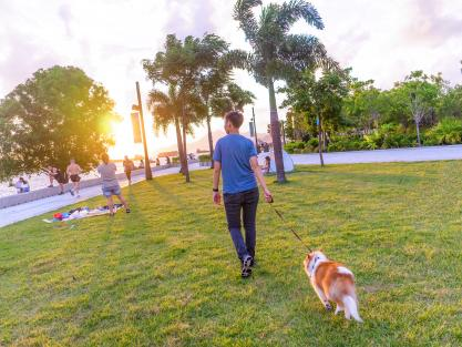 Why West Kowloon is perfect for pets
