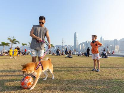 Pets at West Kowloon